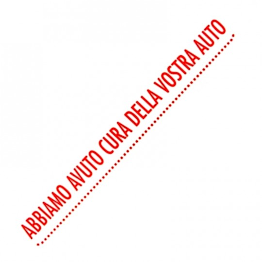 Tappetino in carta 35cm X 50cm per impeccabili interni auto e camion HomeLADY'S LINE®